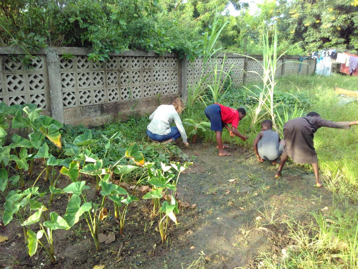 Gemeinsam wurde mit den Kidz im WEM ein eigenes Gemüsebeet angelegt.