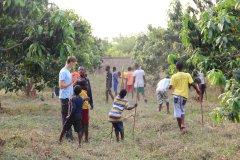 Unsere Mangoplantage sorgt immer wieder für neue Arbeit.